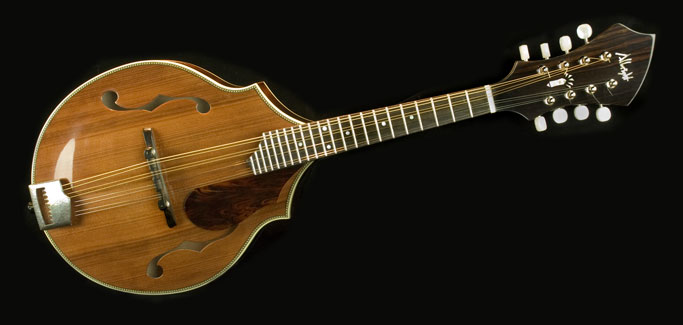 The redwood Albright mandolin